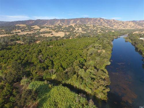 Walnut Orchards Northern California : Winters : Solano County : California