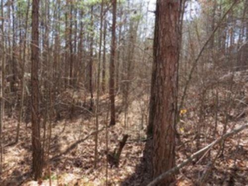 Great Property With Creek : Heflin : Cleburne County : Alabama
