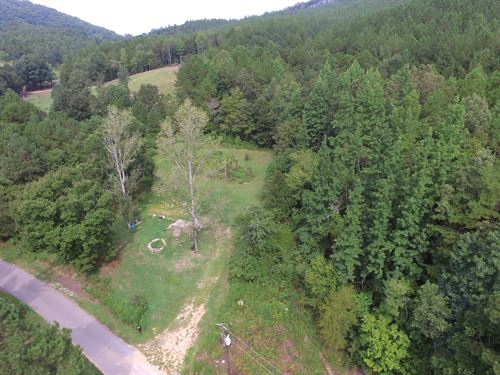 Great Property With Creek : Piedmont : Calhoun County : Alabama
