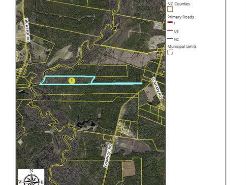 Black River Hunting / Recreational : Ivanhoe : Sampson County : North Carolina