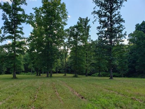 Beautiful Building Sites : Holladay : Benton County : Tennessee