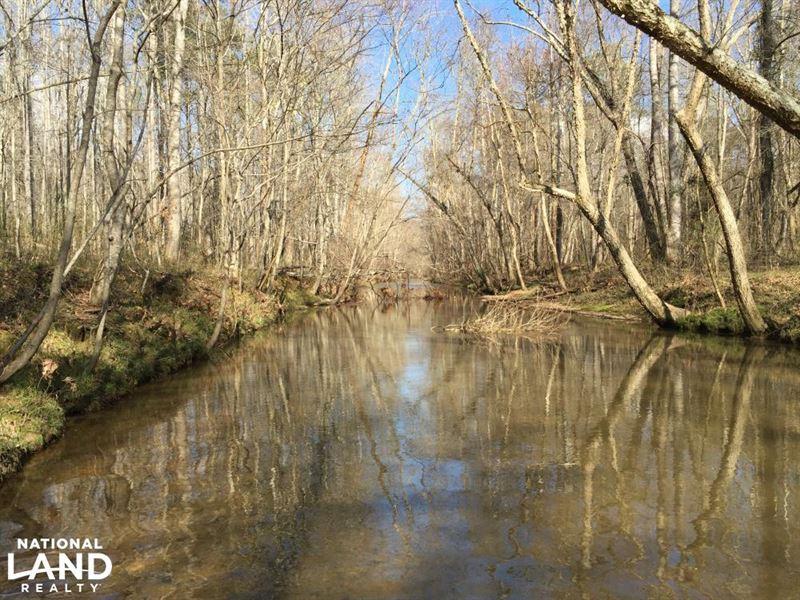 Shoal Creek Road Recreational Timbe : Ashville : Saint Clair County : Alabama