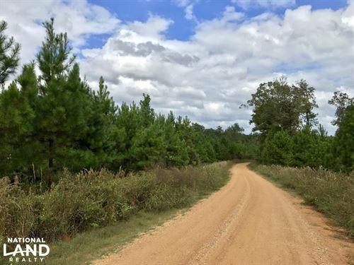 McKinley Black Belt Hunting And Tim : McKinley : Marengo County : Alabama