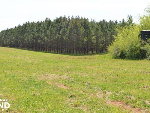 Beaver Creek Hunting & Timber Tract : Autaugaville : Autauga County : Alabama