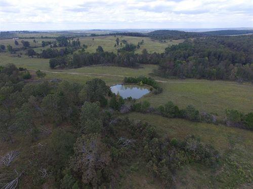 115 Acre Cattle Farm Violet Hill AR : Violet Hill : Izard County : Arkansas