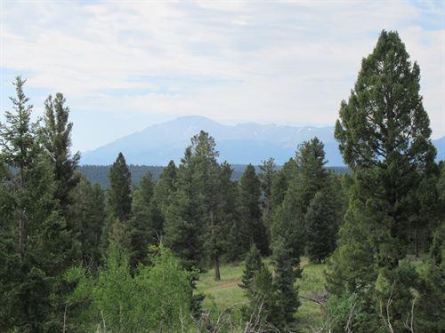 35 Acres Woodland Park Colorado : Woodland Park : Teller County : Colorado