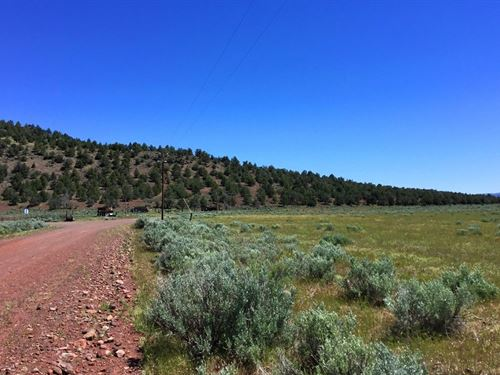 Excellent 40 Ac, Power, $610 P/Mo : Termo : Lassen County : California