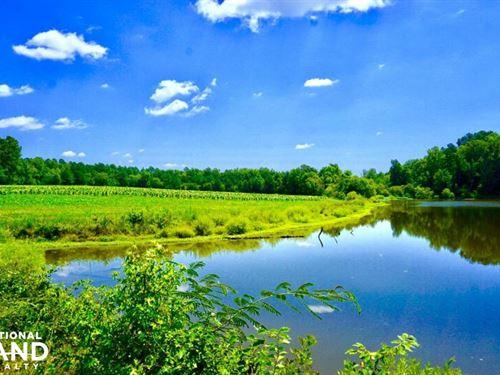 Roxboro Farm And Hunting Land : Roxboro : Person County : North Carolina