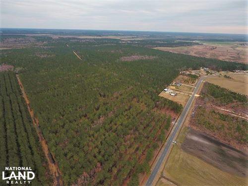 Joe Williams Rd Timber/Homesite : Kinston : Lenoir County : North Carolina