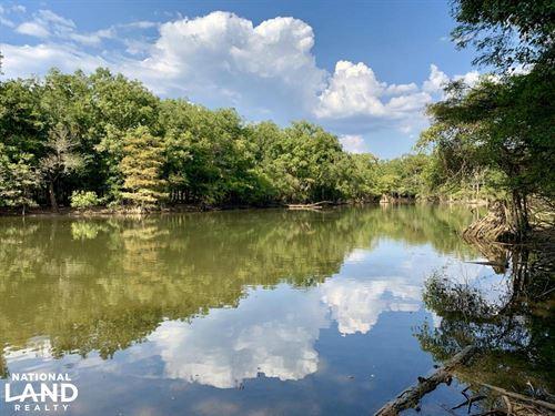 The Tensaw Holley Creek Tract : Tensaw : Baldwin County : Alabama