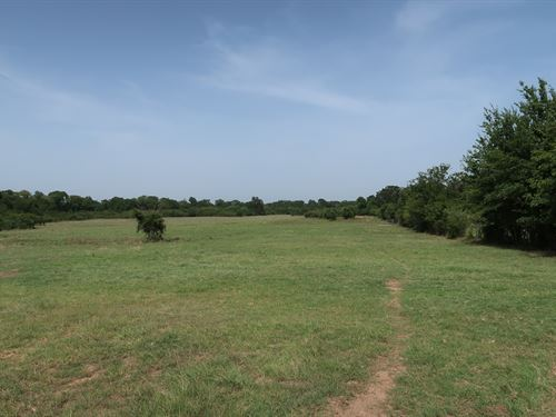 164 Acres in Normangee, TX : Normangee : Leon County : Texas