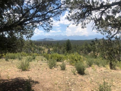 Twisted Pinon Ranch : Cotopaxi : Fremont County : Colorado