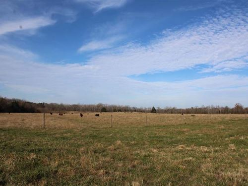 Strother Farm Tract : Faunsdale : Marengo County : Alabama