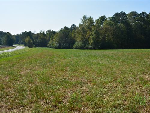 Large Unrestricted Acreage Tract : Siler City : Chatham County : North Carolina