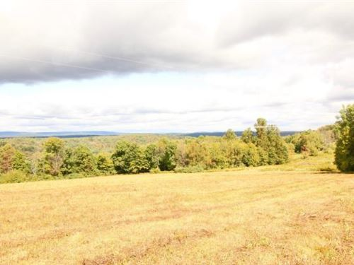 113+/- Acres Land : Shickshinny : Luzerne County : Pennsylvania