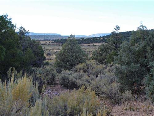 Talavera Lot 1-2B : Tierra Amarilla : Rio Arriba County : New Mexico