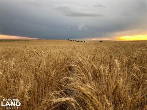 Cropland & Grassland For Sale in Li : Arriba : Lincoln County : Colorado