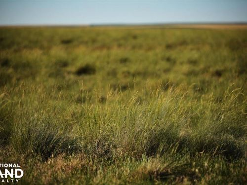 Expired Crp For Sale in Kit Carson : Flagler : Kit Carson County : Colorado