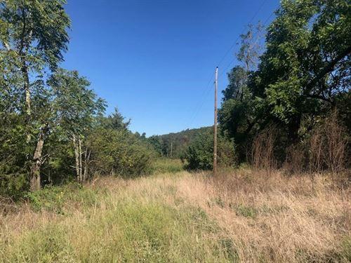 Wooded Acreage in Ozark Mountains : Harrison : Madison County : Arkansas
