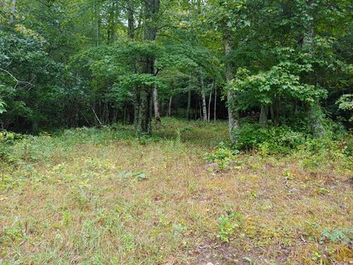 Building Lot For Sale in Fries VA : Fries : Grayson County : Virginia