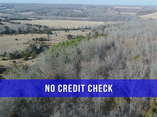 $500 Down On Rec Land Close To Town : Hartville : Wright County : Missouri