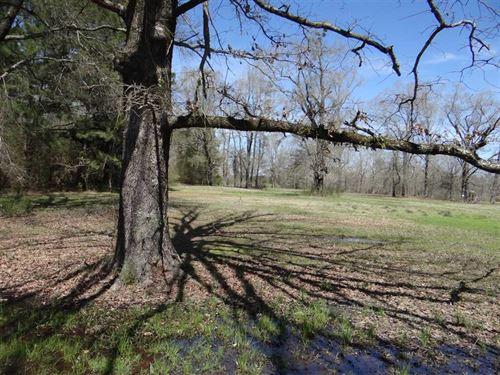 Greene Rd, Webster Parish, 28 Acre : Minden : Webster Parish : Louisiana