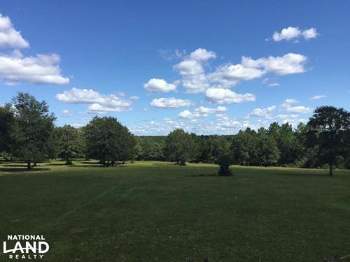 Scenic, Ranch, Pasture, Sloped : Ponce De Leon : Walton County : Florida