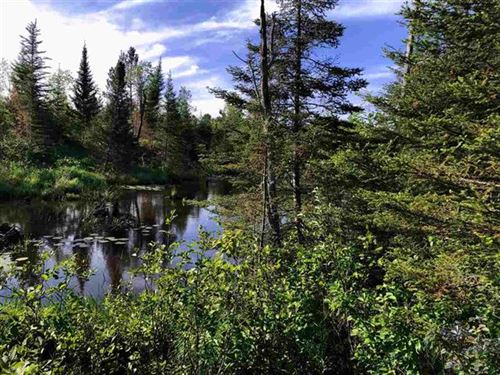75 Acres, 11 Ponds, River 1118070 : Republic : Marquette County : Michigan