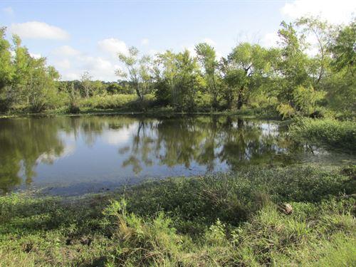 145 Ac Shiro Ranch : Bedias : Grimes County : Texas