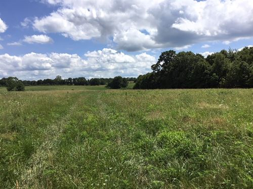 Missouri Farm Land For Sale : Mansfield : Wright County : Missouri