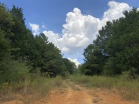 97.52+- Wooded Acres Bartow County : Taylorsville : Bartow County : Georgia