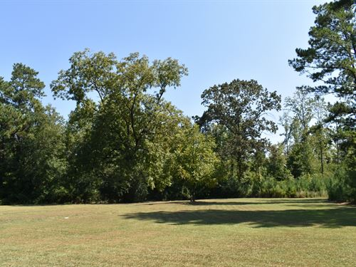 Absolute Auction Of Multi-Property : Talladega : Alabama