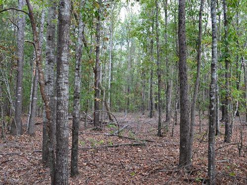 Dye Branch North : Thomaston : Upson County : Georgia