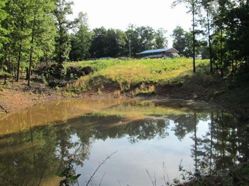 Secluded Homestead With Acerage : Norwood : Douglas County : Missouri