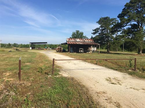 Excellent Hunting Land & Irrigated : Kingstree : Williamsburg County : South Carolina