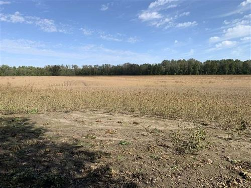130 Acres in Livingston County : Chillicothe : Livingston County : Missouri