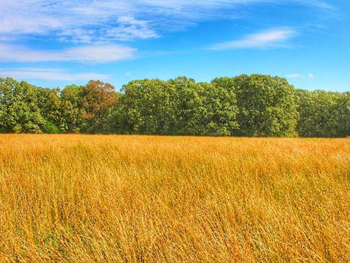 Outstanding 60 Acre Tract Cedar : Humansville : Cedar County : Missouri