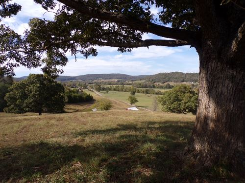 Ozark Mountain Land, Views : Leslie : Searcy County : Arkansas