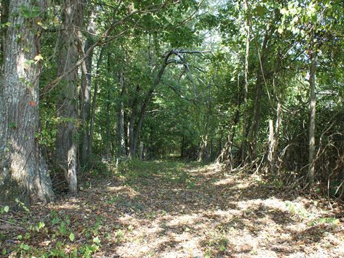 12.64 Acres With Stream : Woodlawn : Carroll County : Virginia