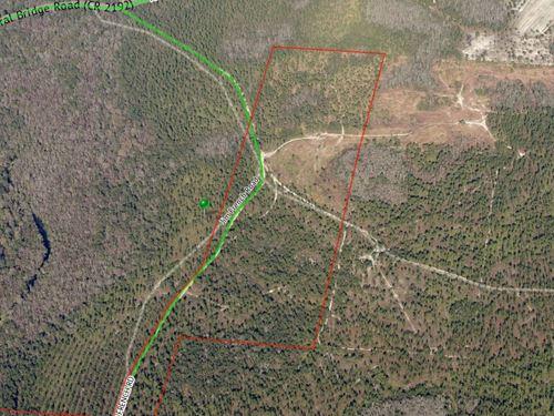 Jim French Road, Cattle Gap : Crawfordville : Wakulla County : Florida