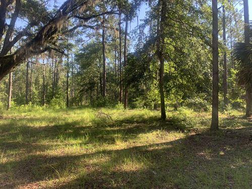 Jim French Road, Cabin Tract : Crawfordville : Wakulla County : Florida