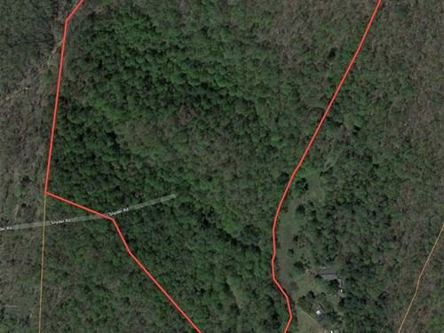 35 Acres in The Heart of The NC : Bakersville : Mitchell County : North Carolina