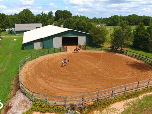 Private Horse Training / Boarding : Alexis : Gaston County : North Carolina