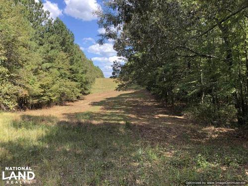 14.5 Acre Hunting & Timber Tract : Kosciusko : Attala County : Mississippi