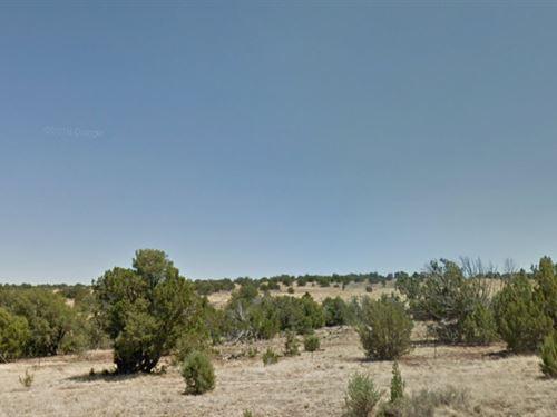 Stunning Property 20.66 Acres : Snowflake : Navajo County : Arizona