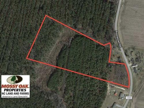 13.7 Acres of Hunting And Timber : Gates : North Carolina