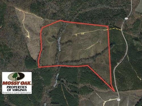 100 Acres of Hunting And Recreatio : Kenbridge : Lunenburg County : Virginia