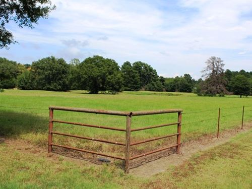 Ranch Land With 3 Homes : New Boston : Bowie County : Texas