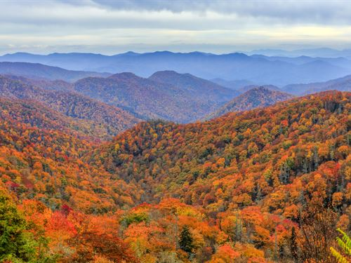Asheville Mountain Estates : Asheville : Buncombe County : North Carolina