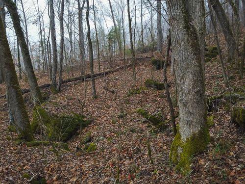 Valuable Multi-Use Land Near Pinson : Pinson : Jefferson County : Alabama